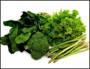 As Verduras são as principais aliadas para se perder barriga!