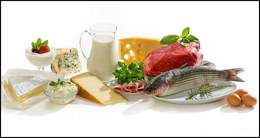 As Proteinas ajuda a perder barriga!