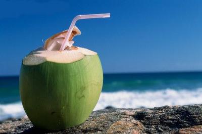 A fruta do coco é saudável e muito refrescante.