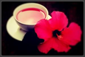 Dicas de como preparar o cha hibiscus para emagrecer.